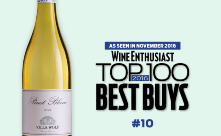 Villa Wolf Pinot Blanc a Wine Enthusiast Top 100 Best Buy